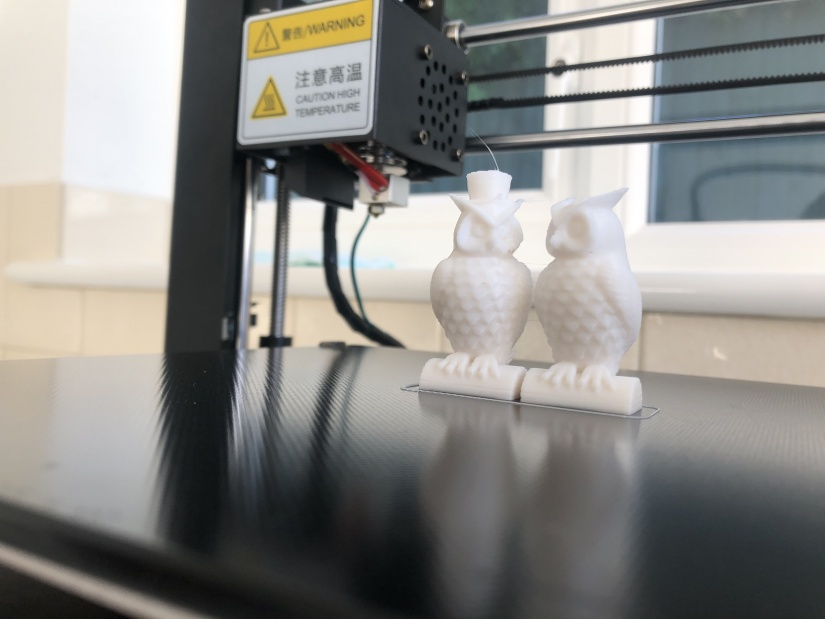 Anycubic i3 Mega S test owls