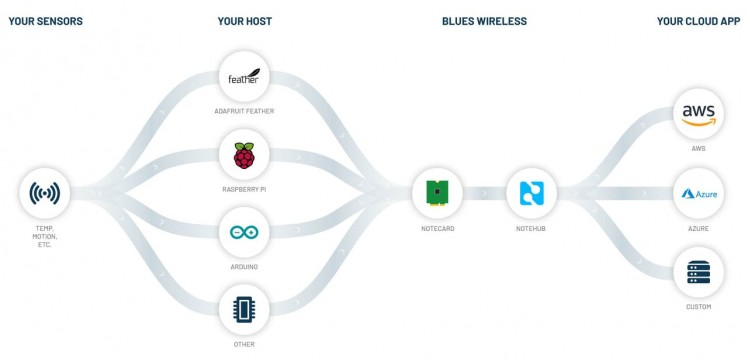 Image credit Blues Wireless